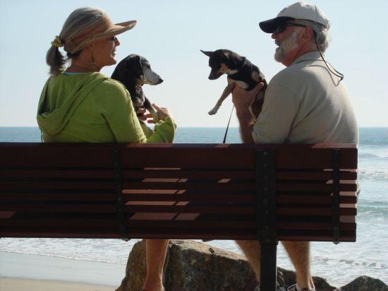 Coronado Shores, 2012